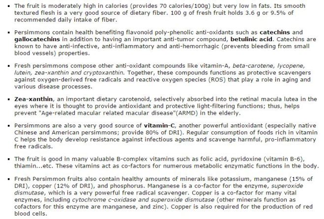 persimmon health benefits