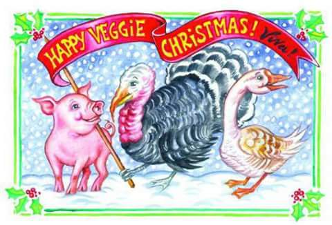 xmas card vegan